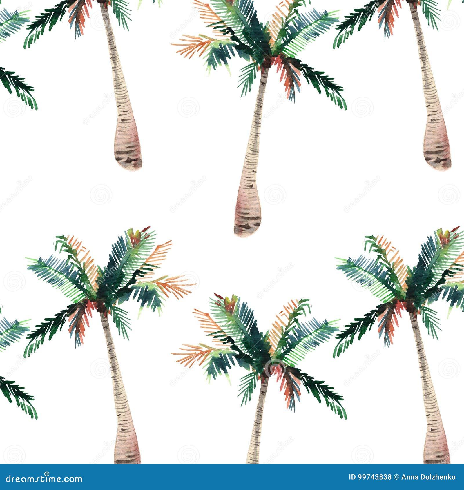 Beautiful Bright Cute Green Tropical Lovely Wonderful Hawaii