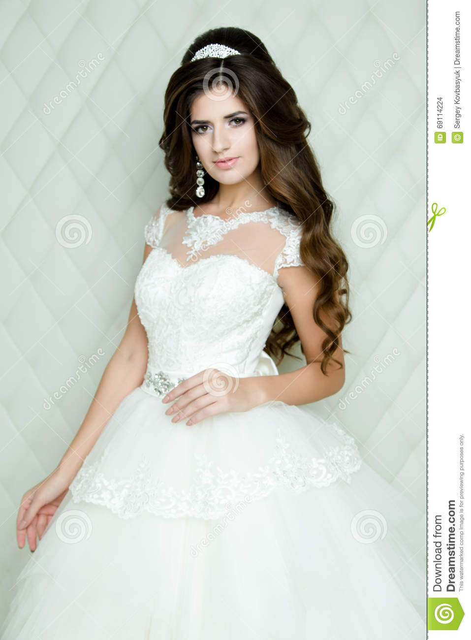 Beautiful Brunette Bride Portrait Wedding Makeup And Hairstyle With ...