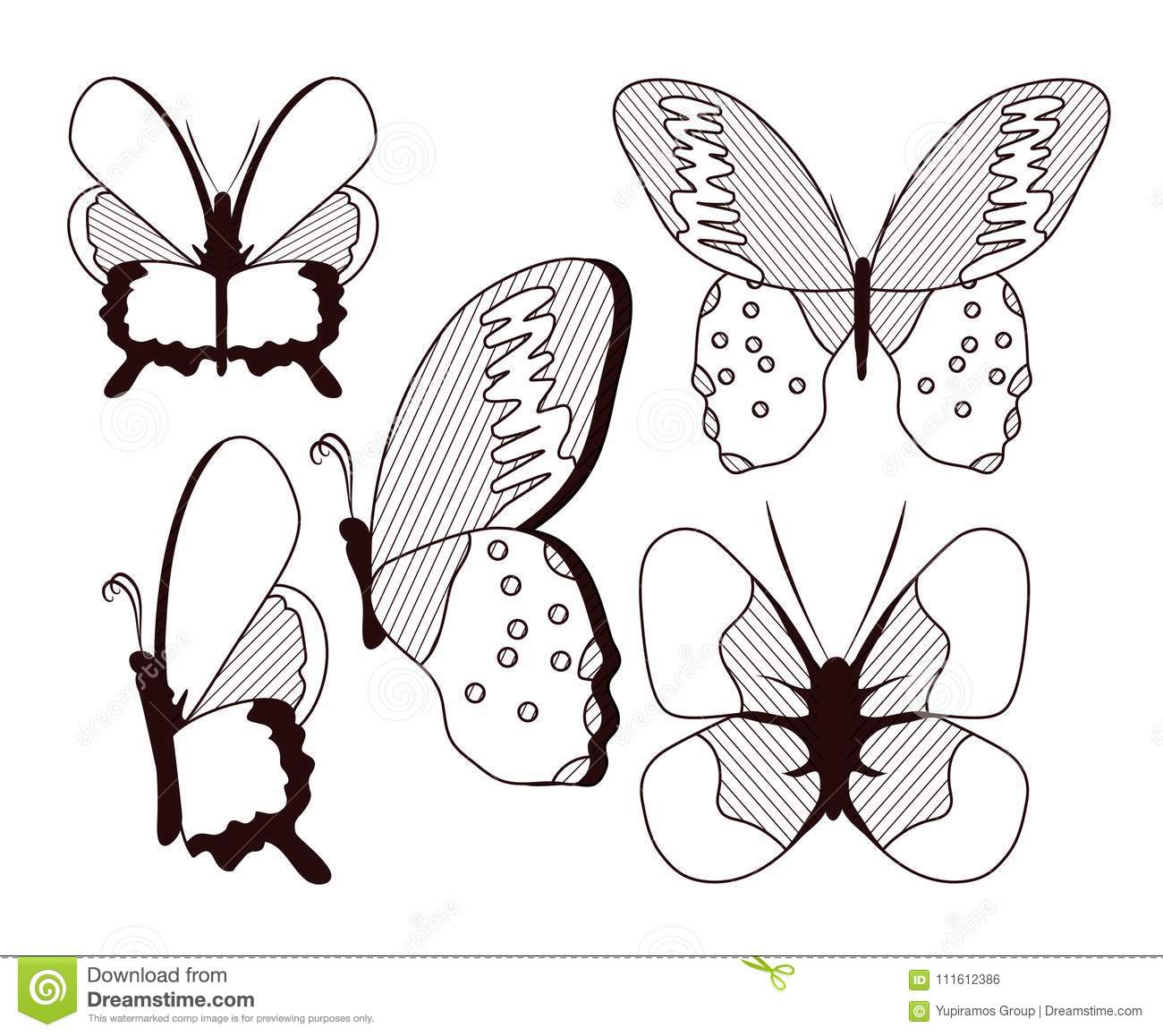 d84605407a1ef Beautiful Butterflies Collection Stock Vector - Illustration of ...