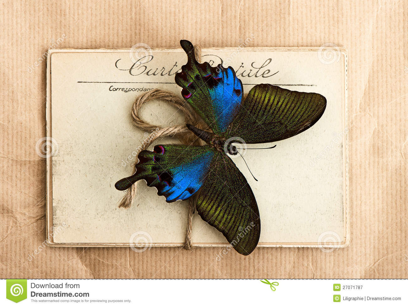 beautiful butterfly and old post cards stock image  image