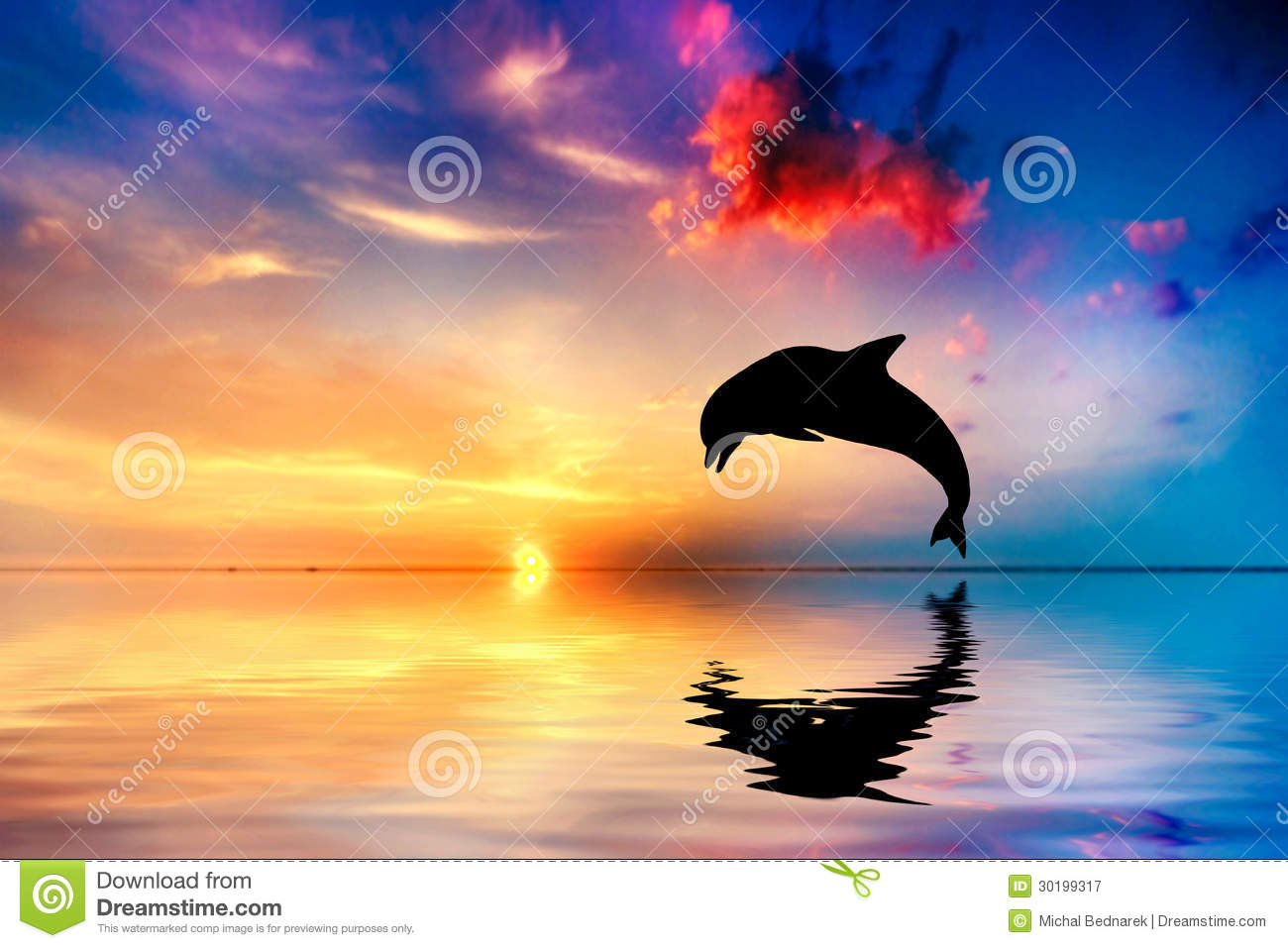 Beautiful ocean and sunset, dolphin jumping