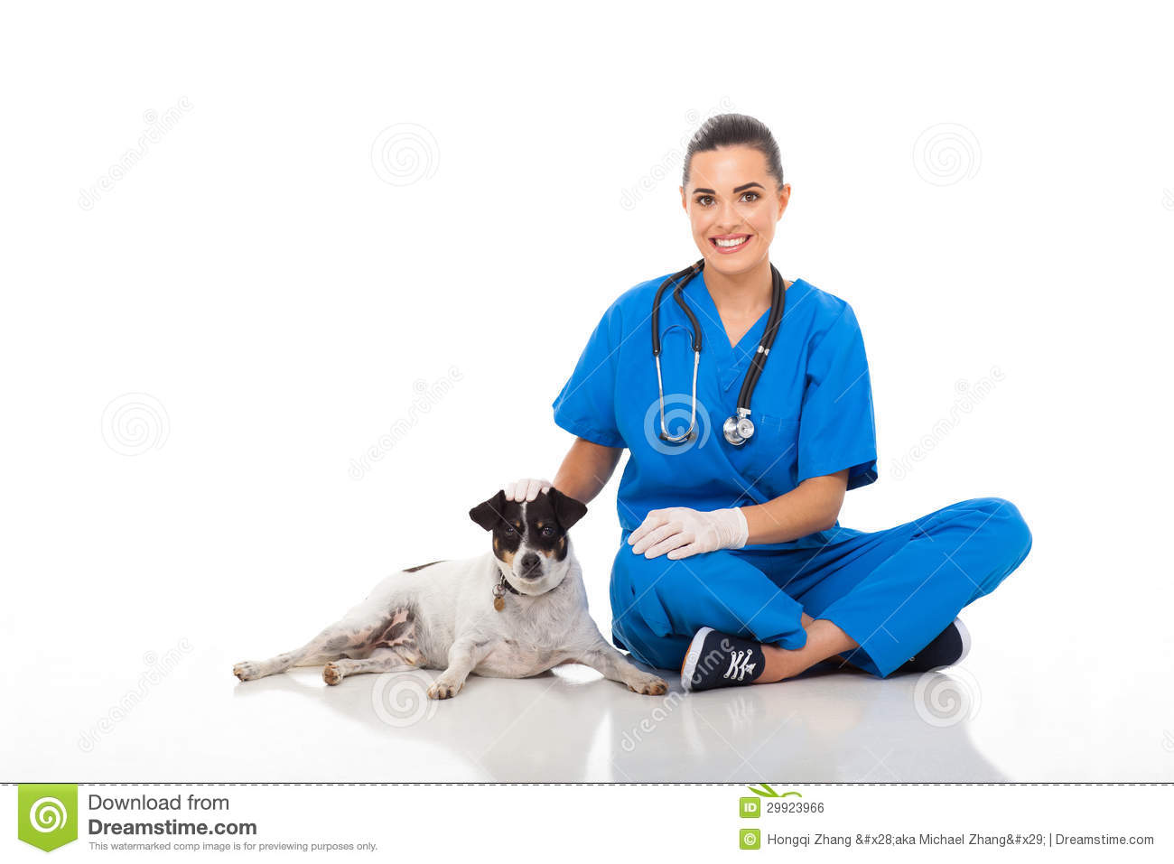 The Dog And Cat Doctor New York