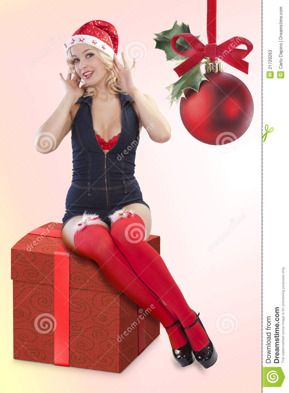 beautiful christmas pinup girl stock image image 21729263. Black Bedroom Furniture Sets. Home Design Ideas