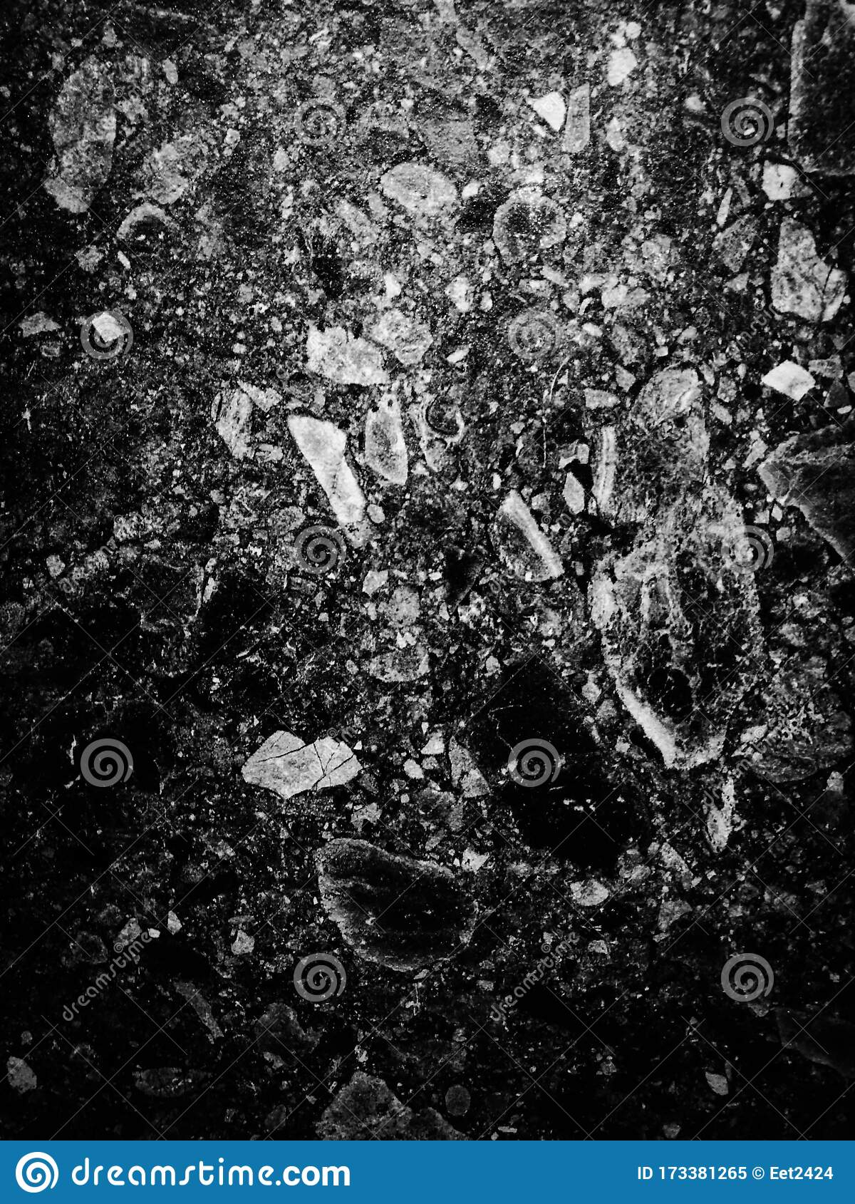 Beautiful Closeup Textures Abstract Color Dark Black And White Granite Tiles Floor And Black Flowers Granite Rock Wall Pattern W Stock Image Image Of Ceramic Closeup 173381265