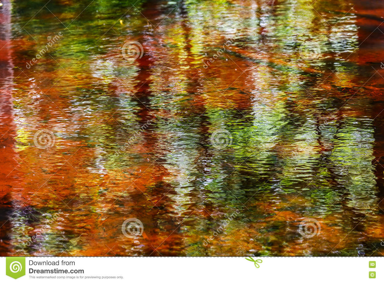 colorful reflection related keywords - photo #39