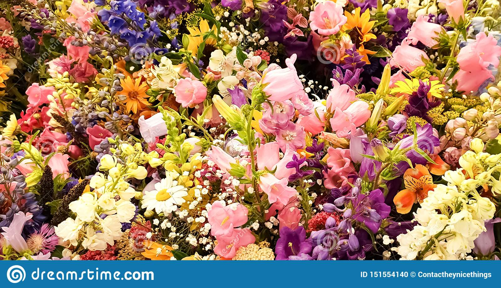 Beautiful colorful flowers bouquet