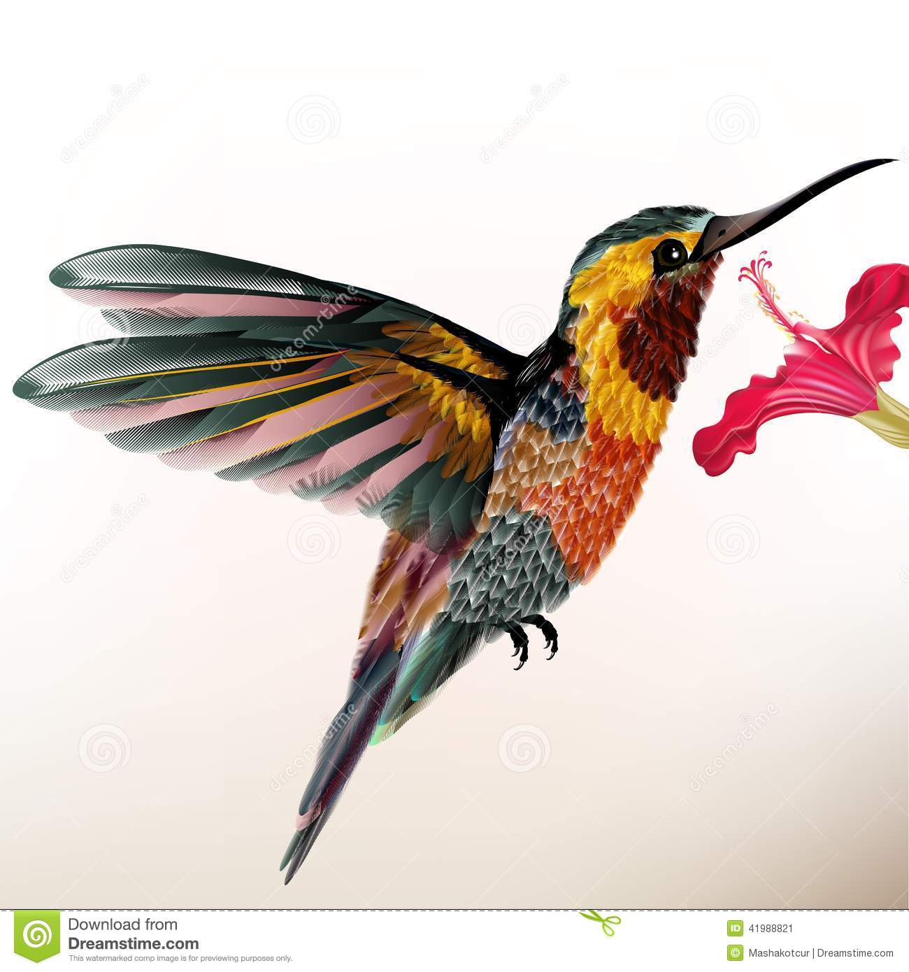 Beautiful Colorful Hummingbird With Flower Stock Vector