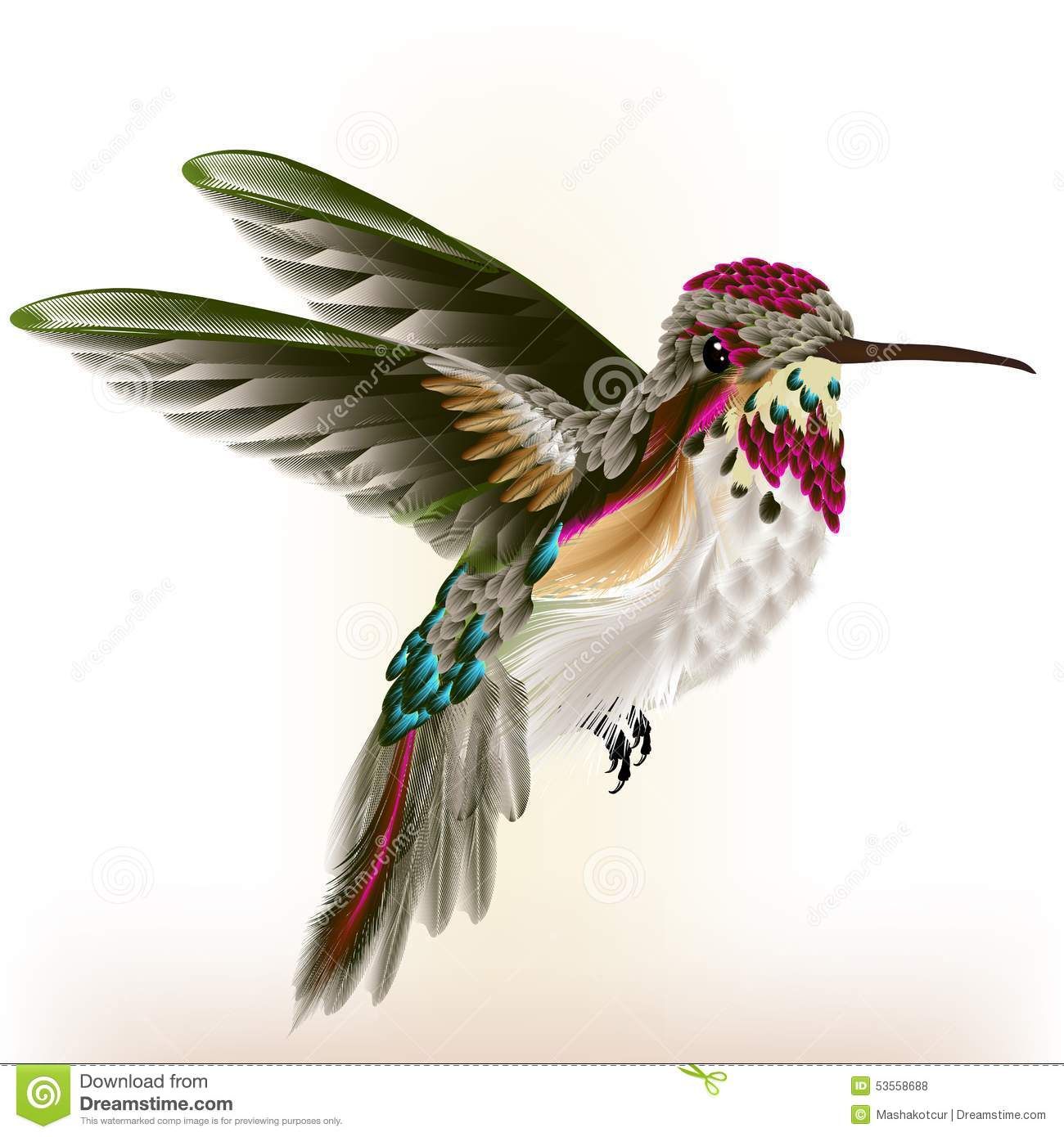 Beautiful Colorful Hummingbird In Fly Stock Vector ...