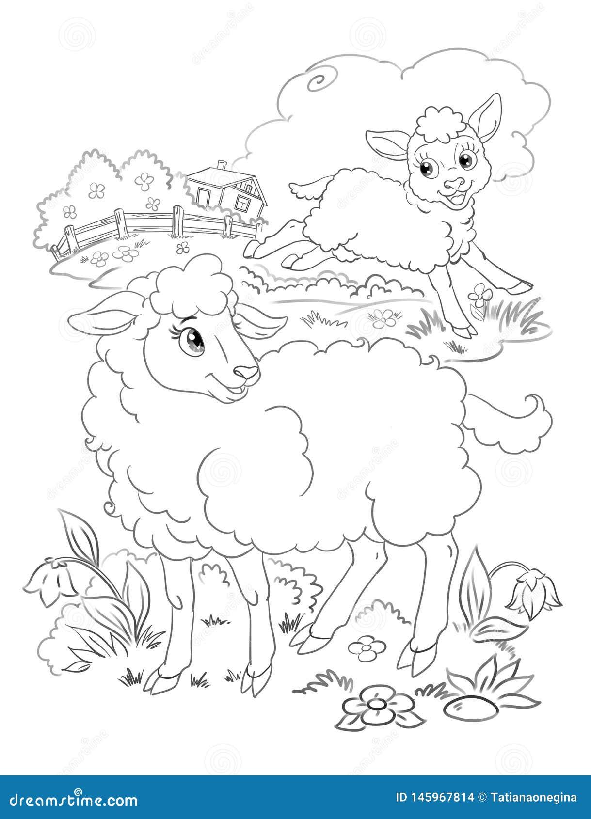 Happy Lamb And Sheep Coloring Stock Illustration ...