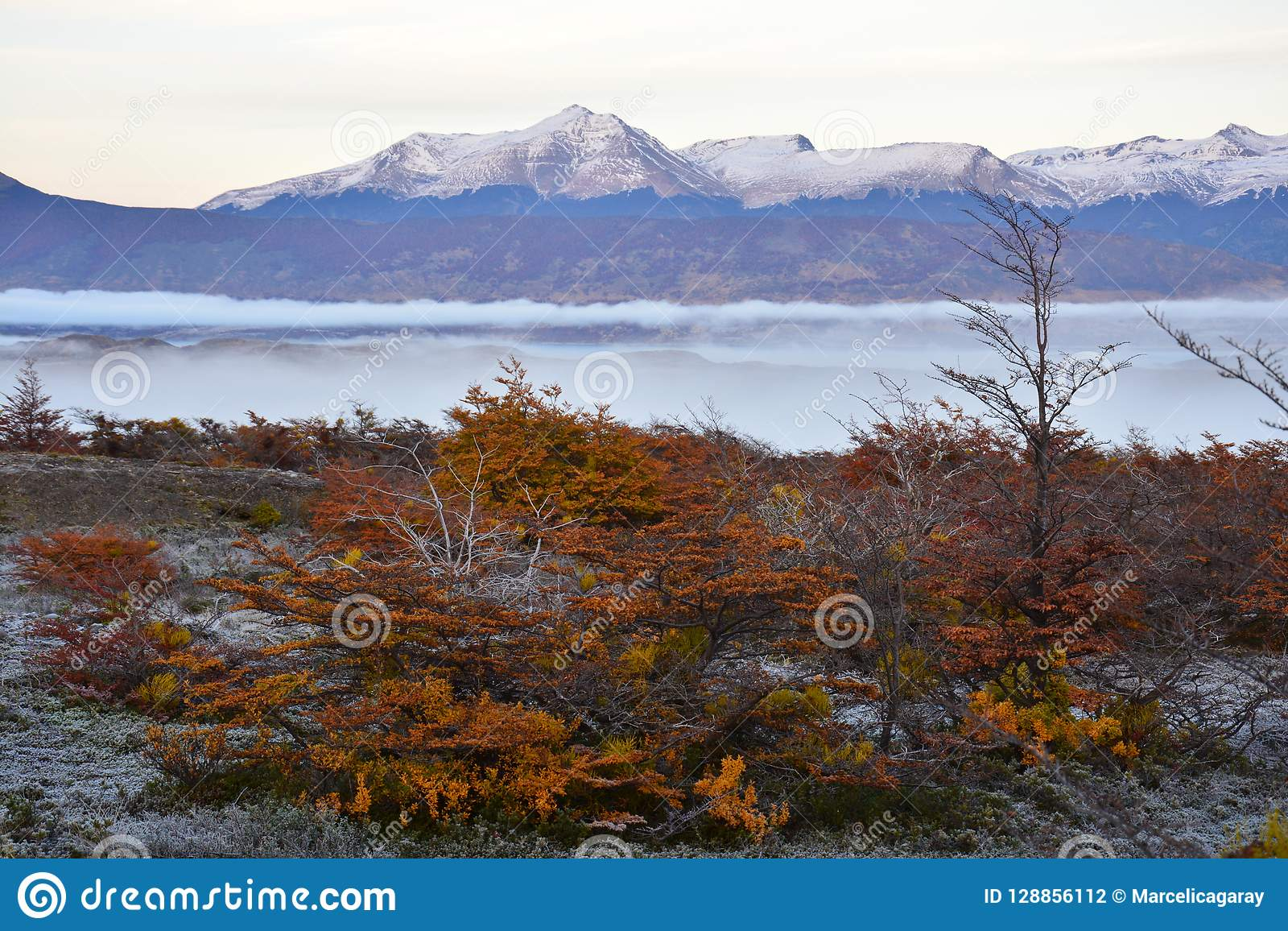 Autumn landscape in Puerto Natales Patagonia Argentina