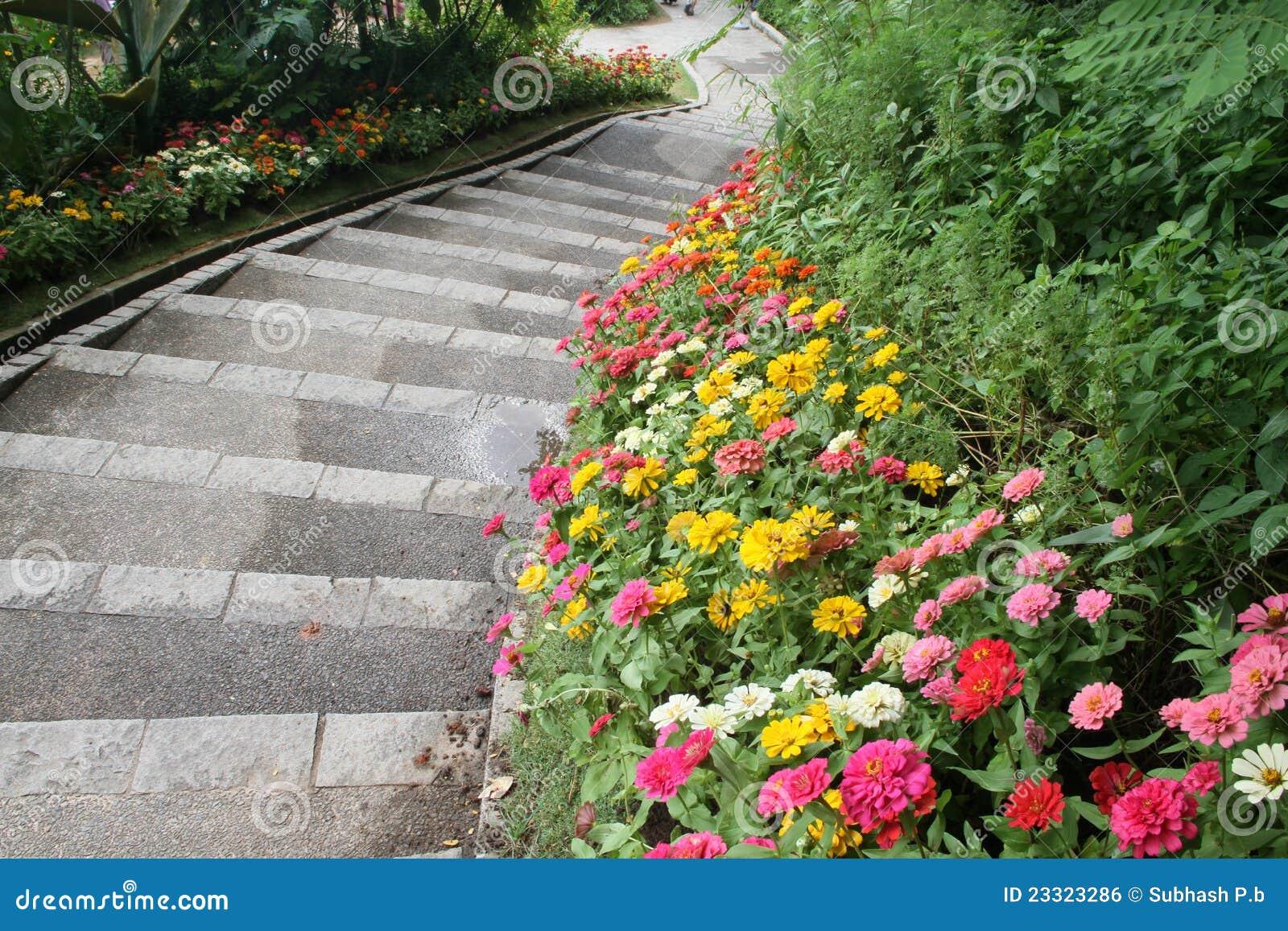 Beautiful Flower Garden Path