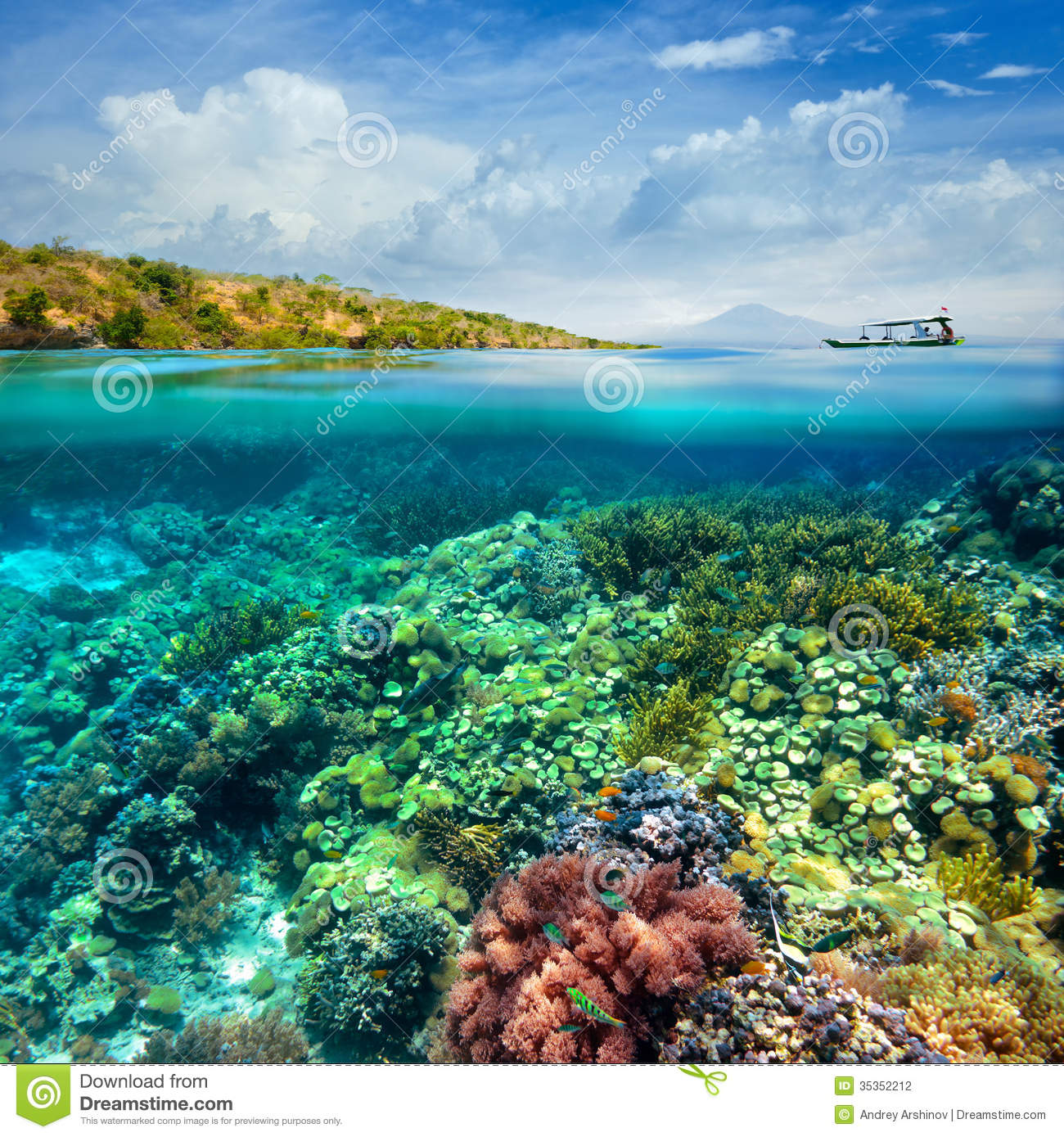 Beautiful Coral Reef On Background Of Cloudy Sky And Volcano. Stock
