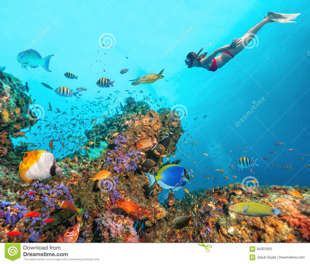 Beautiful coral reef with young freediver woman