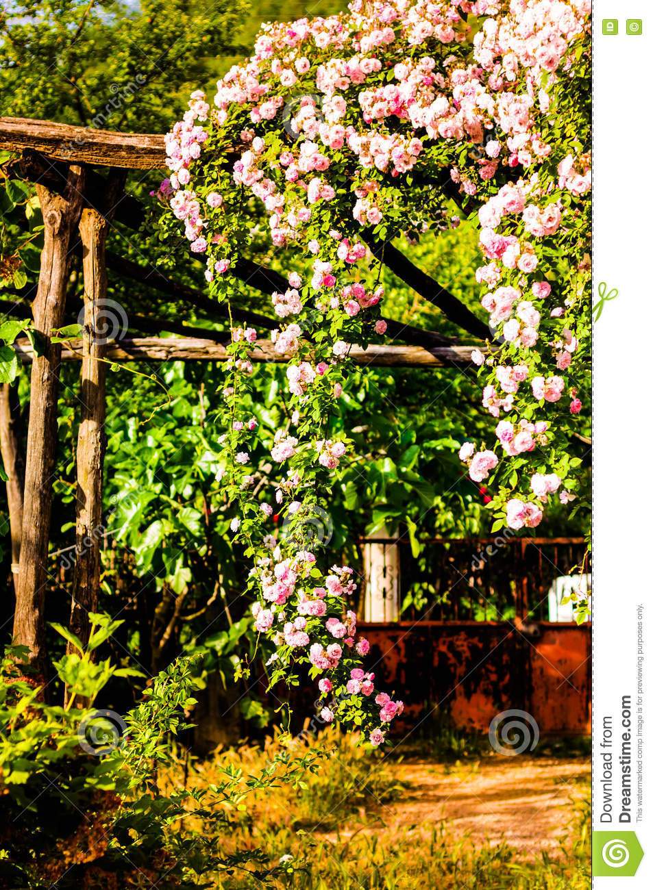 Beautiful country house garden stock photo image 71337766 - Countryside dream gardens ...