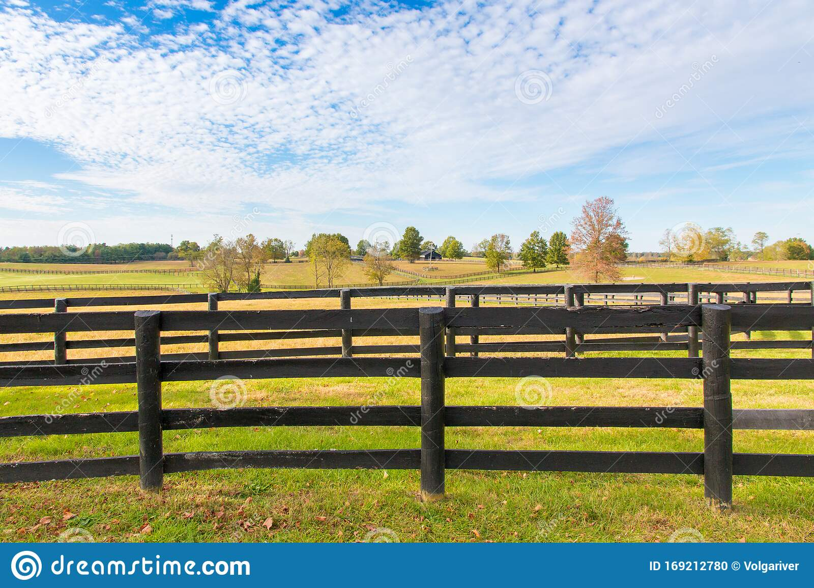 Beautiful Country Landscape With Black Wooden Fence And Pastures Of Horse Farms Stock Photo Image Of Lexington Landscape 169212780