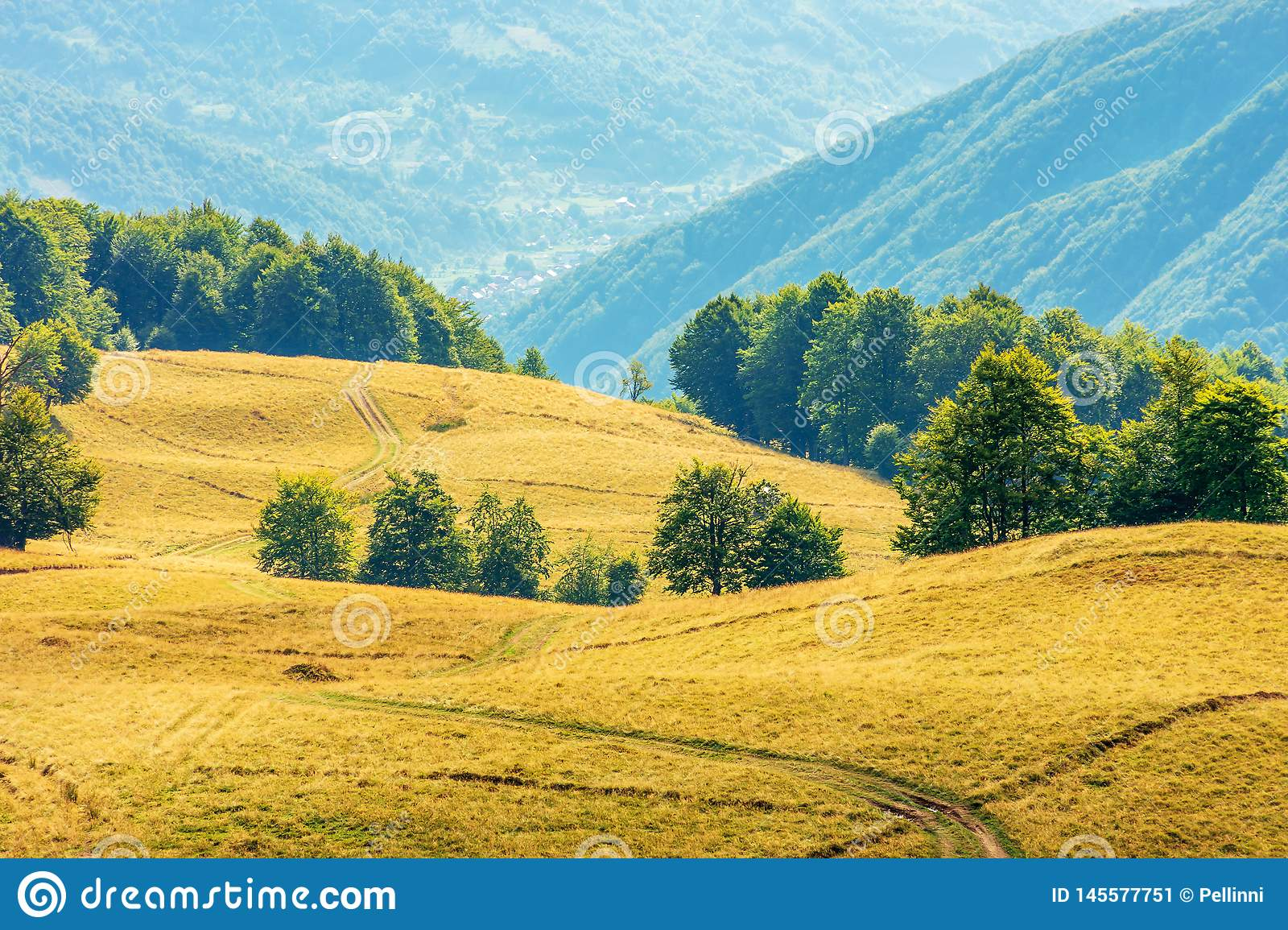 Beautiful countryside scenery in late summer