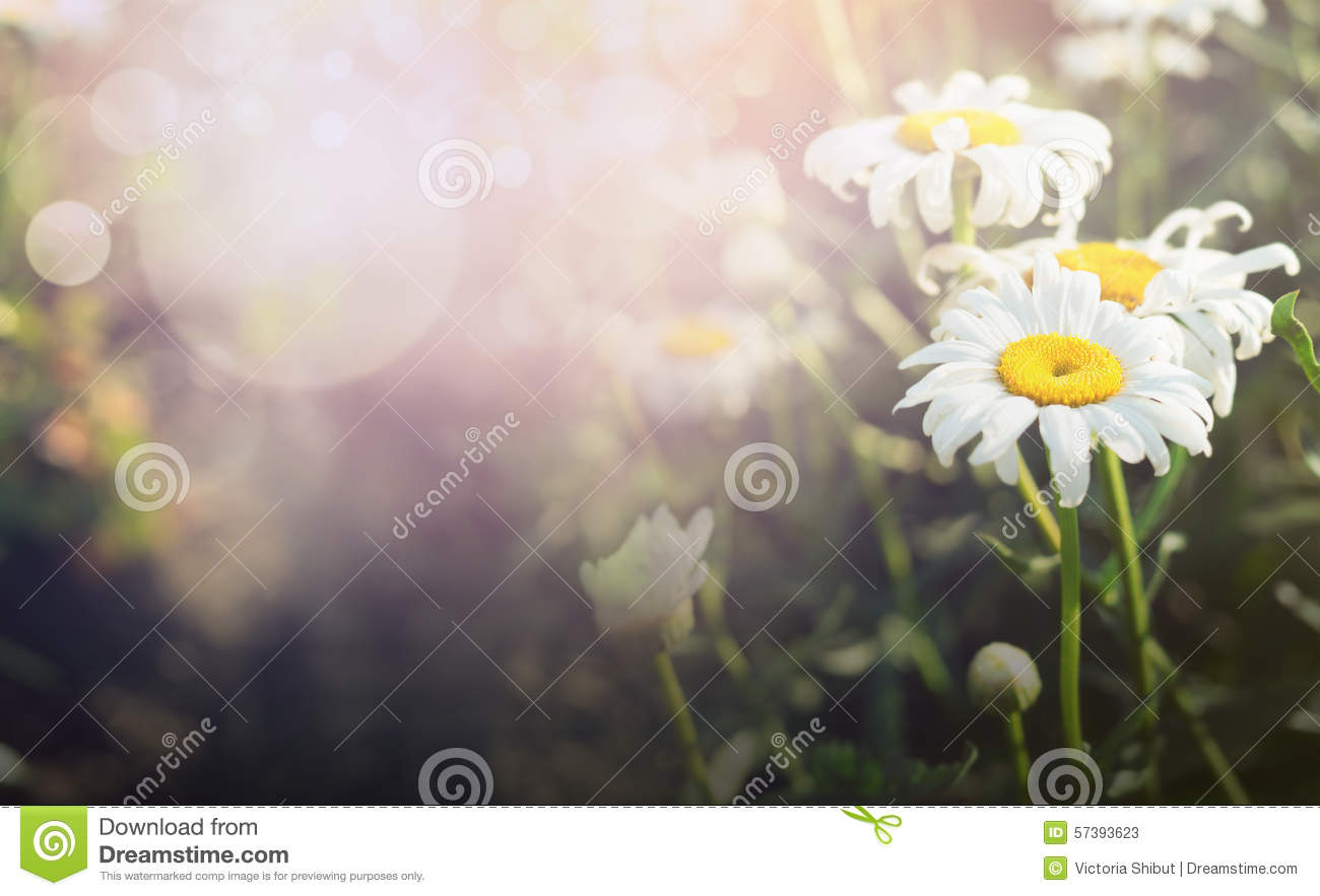 Images of Pretty Outdoor Backgrounds 65 FAN