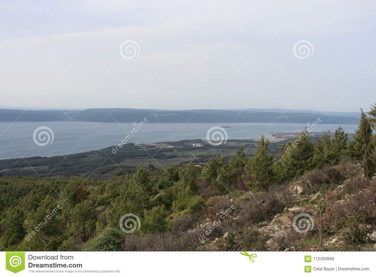 Download A Beautiful Day In The Forest And Sea Stock Photo - Image of gallipoli, martyrdom: 112350946