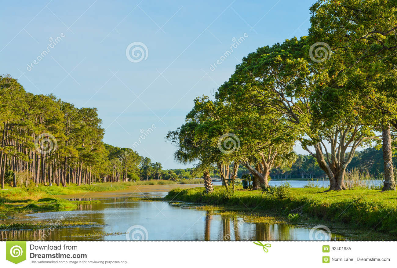 A beautiful day for a walk and the view of the island at John S. Taylor Park in Largo, Florida.