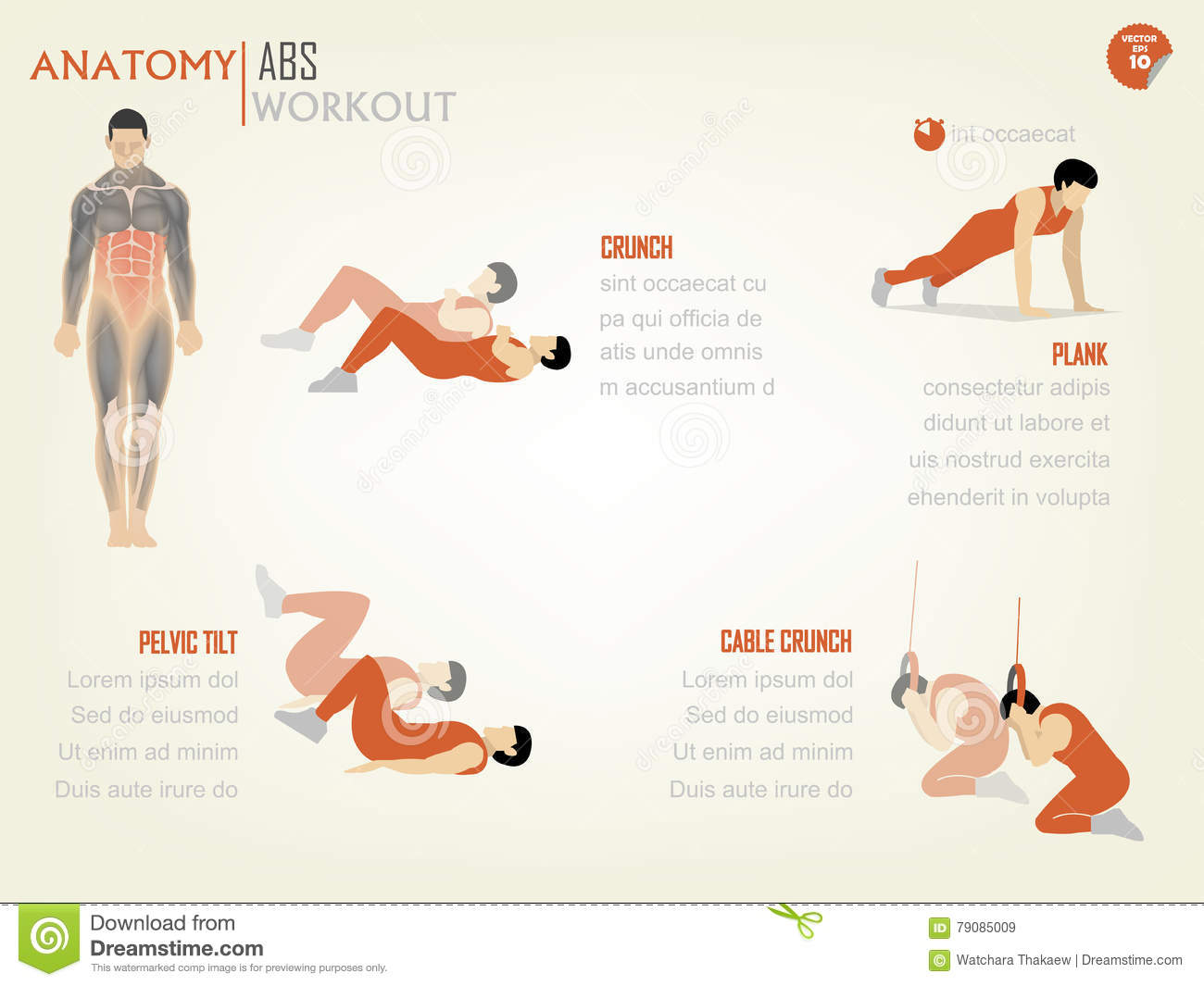 Beautiful design info graphic of abdominal ABS core body workout consist of crunch