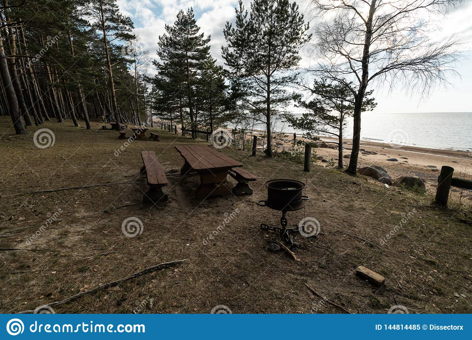 Beautiful distant picnic and camping spot near a Baltic sea in a pine forest with a boulder beach in the background -