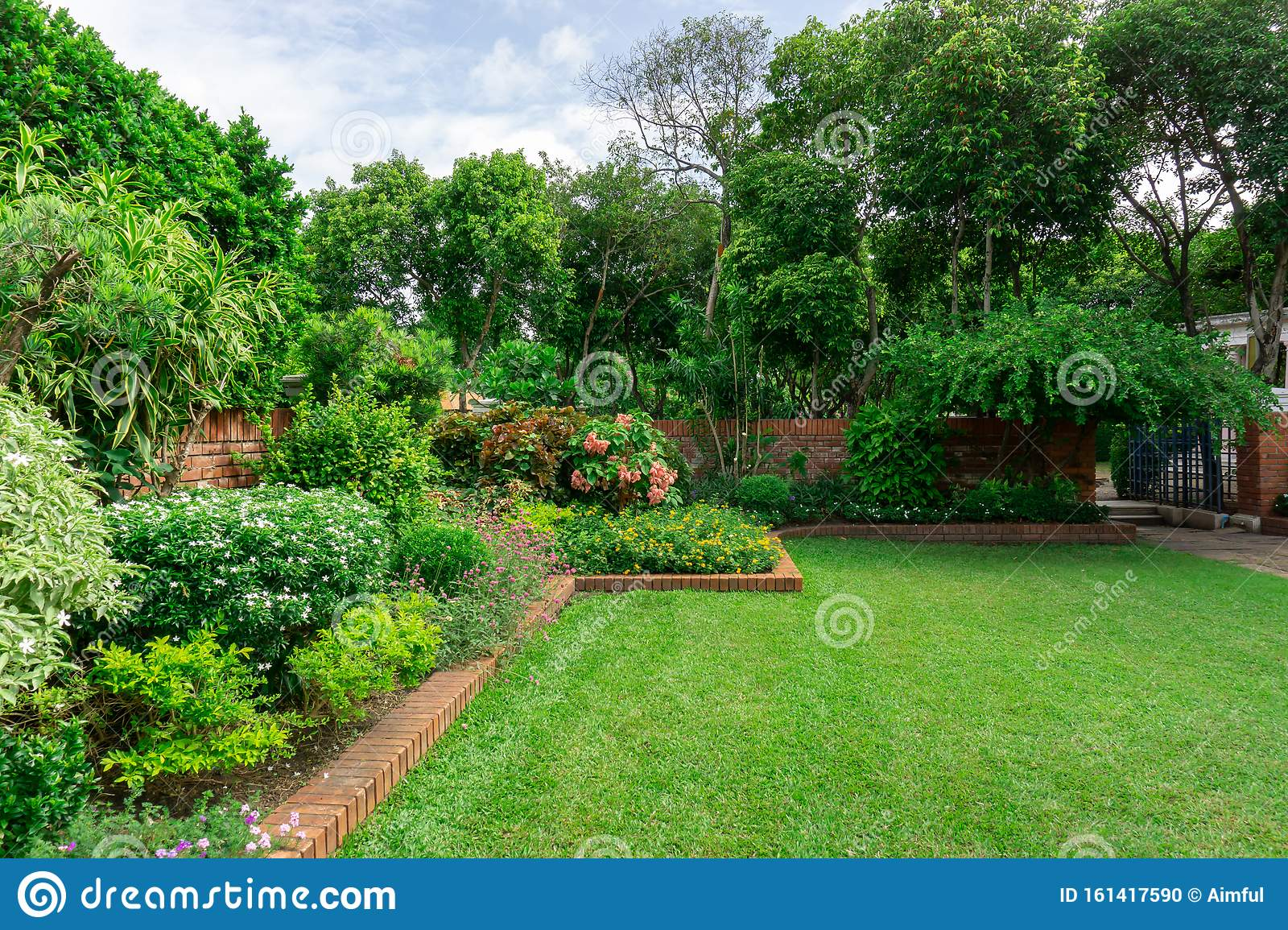 Beautiful English Cottage Garden Colorful Flowering Plant On
