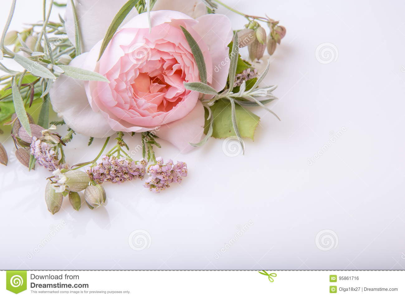 Beautiful english rose flower bouquet on white background stock beautiful english rose flower bouquet on white background izmirmasajfo