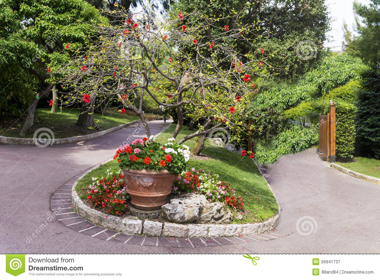 Beautiful Exotic Garden In Monaco Stock Image Image