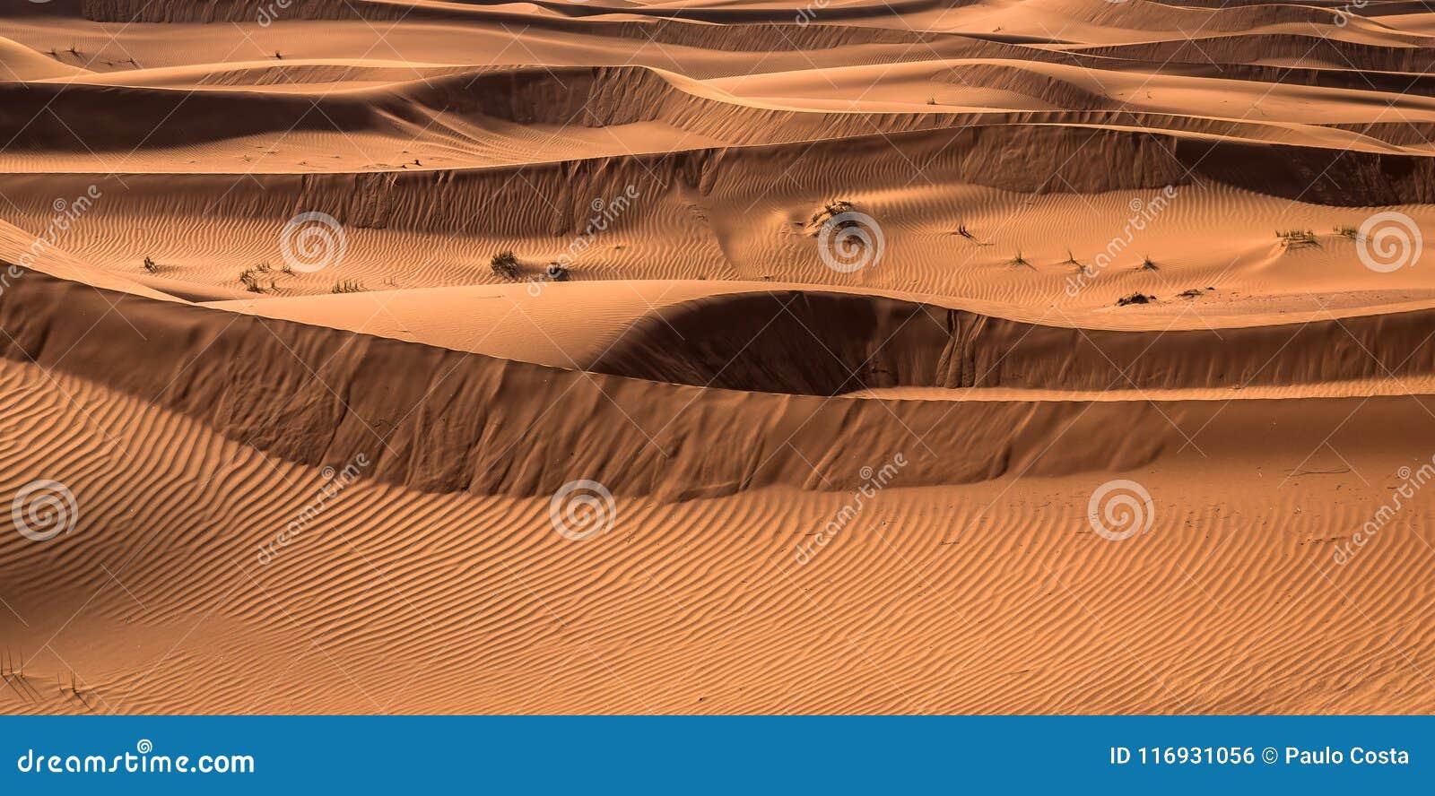 Desert sunset exposure near Dubai, United Arab Emirates
