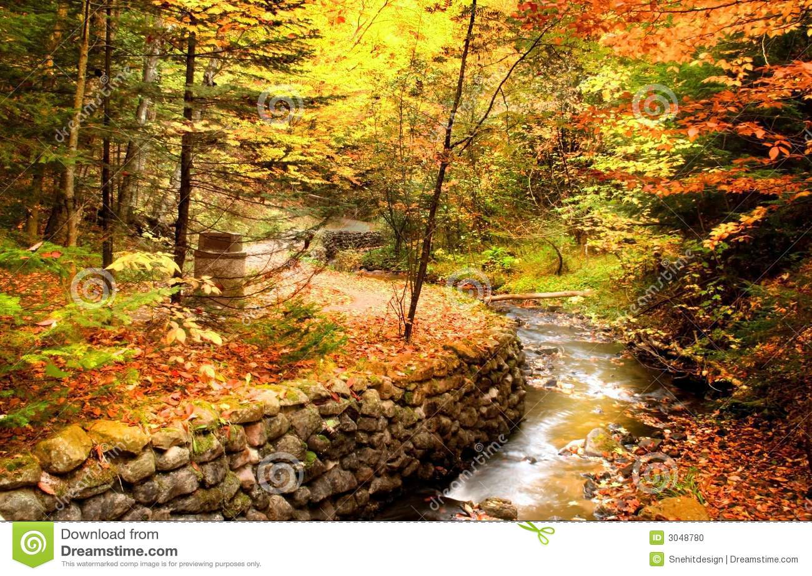 Beautiful fall scene stock photo image of bicycling - Pics of fall scenes ...