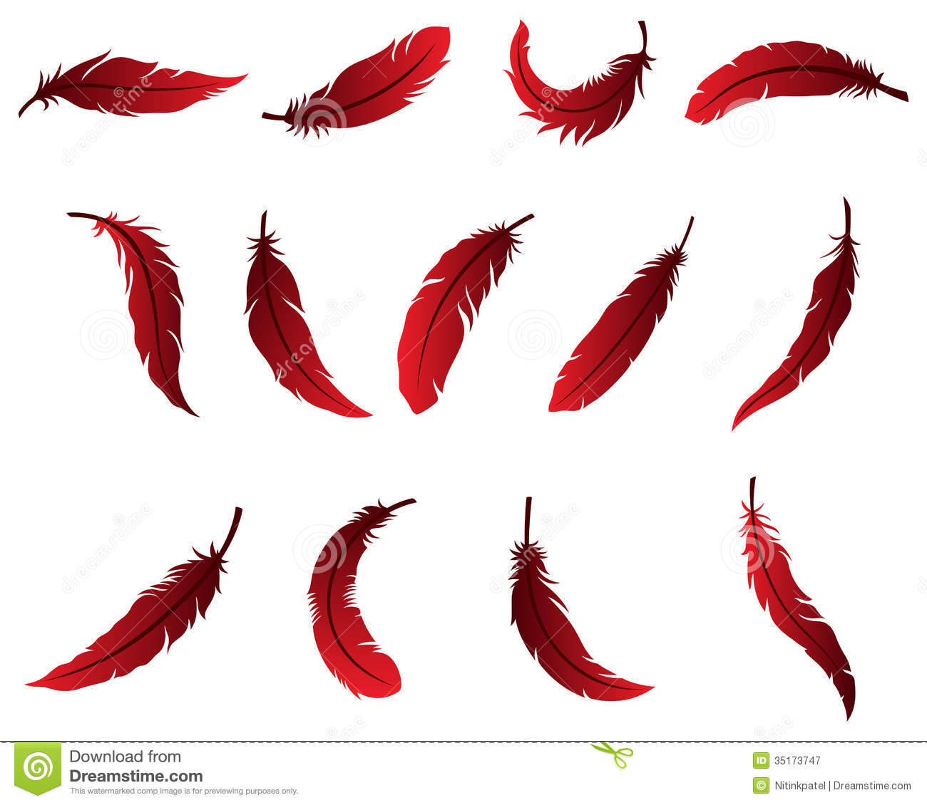 Beautiful Feather Design For Logo Royalty Free Stock