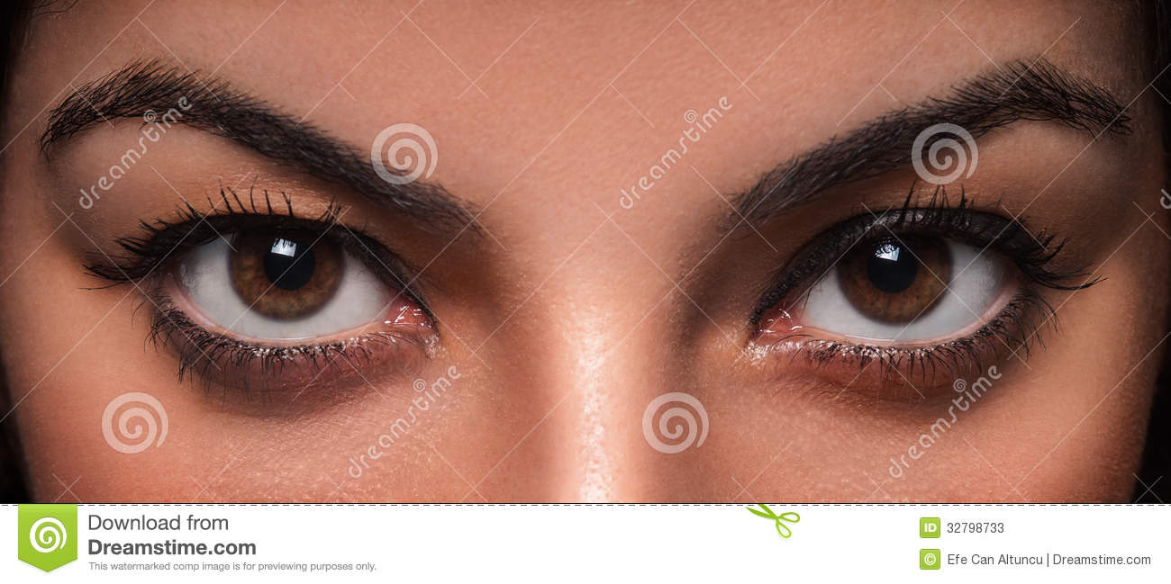 Beautiful and wild female eyes staring or looking at the camera.