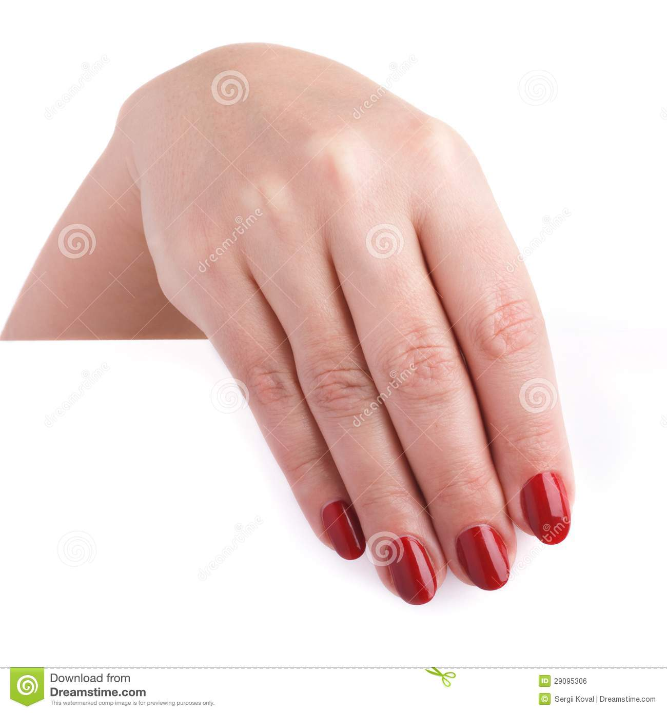 Beautiful Female Hands With Red Long Nails Holding A Blank Billboard ...