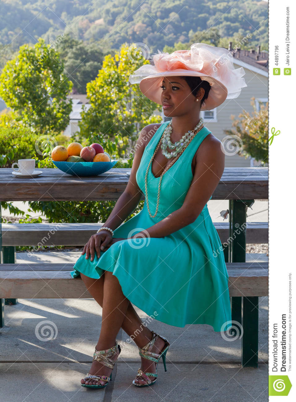 Beautiful female with hat stock photo. Image of party - 44897796
