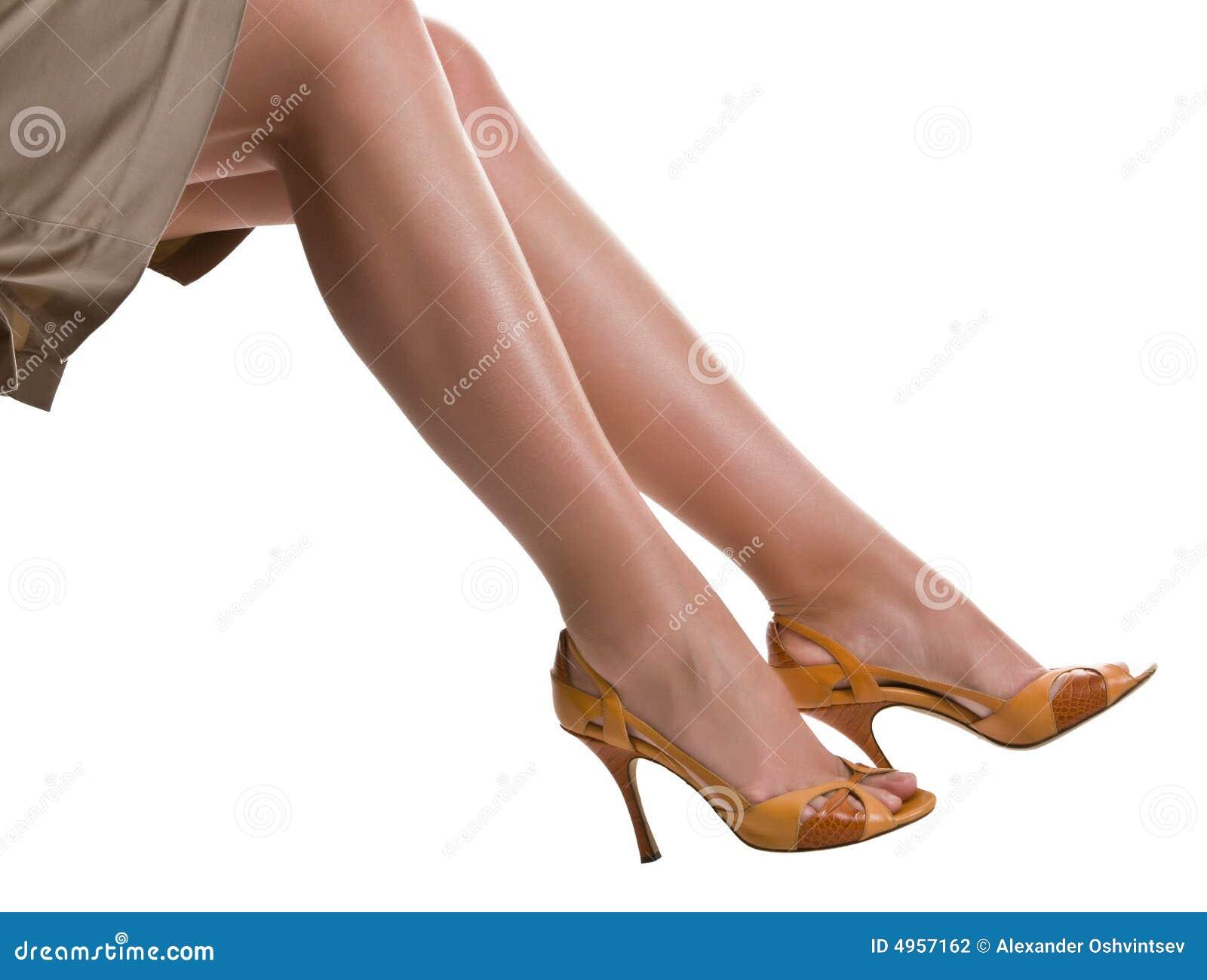 Beautiful Female Legs Stock Photography Image 4957162