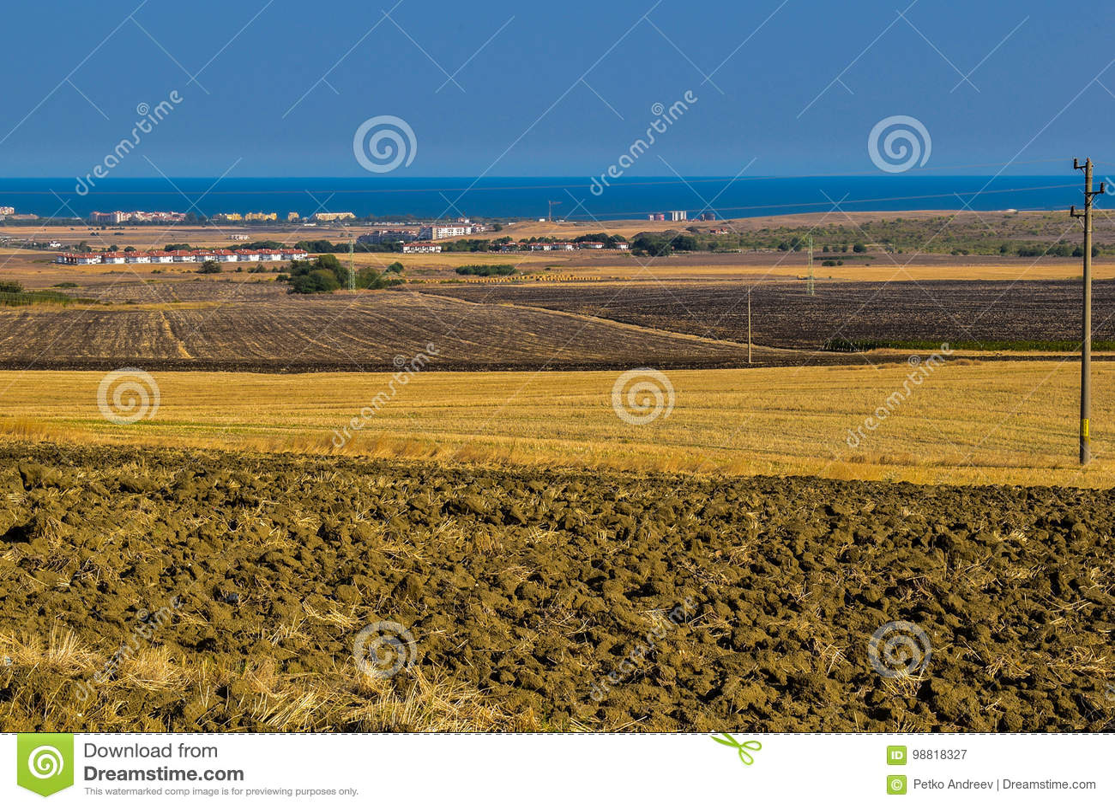 Fields near Black Sea