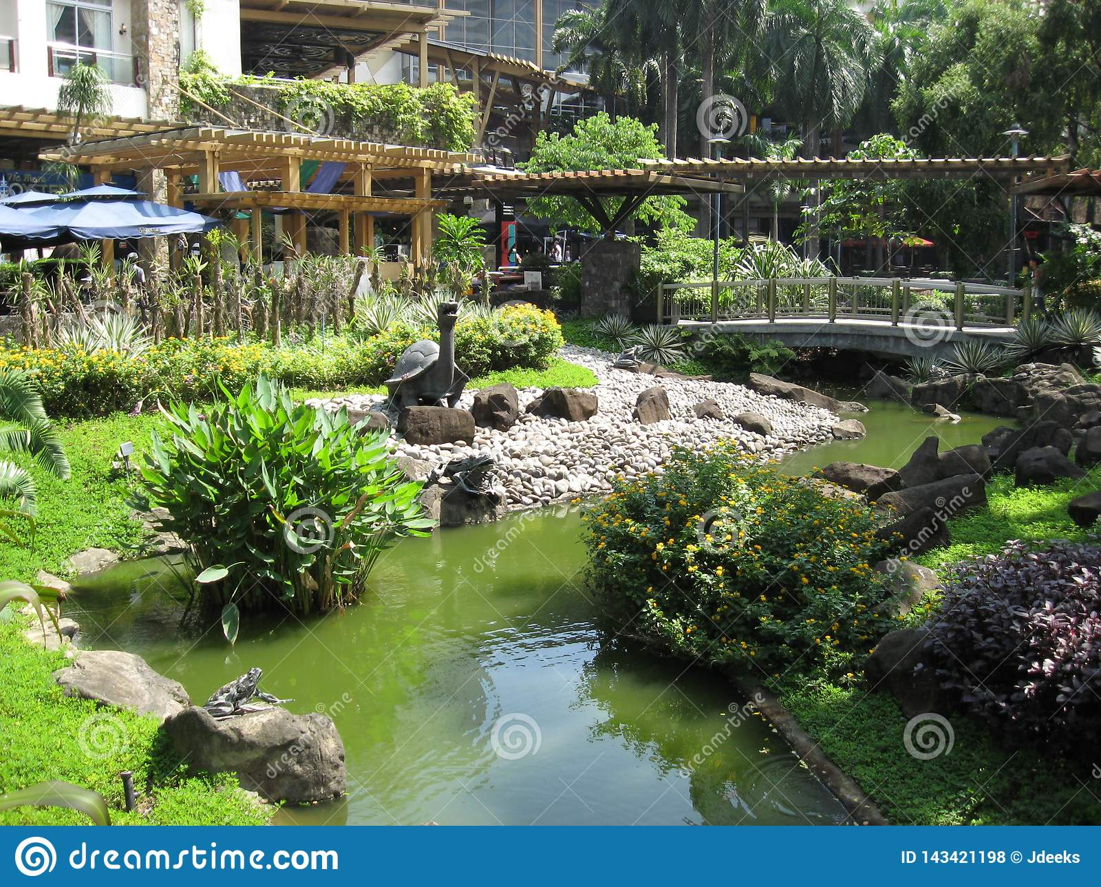 A beautiful fish pond at makati greenbelt park makati for Koi pond quezon city