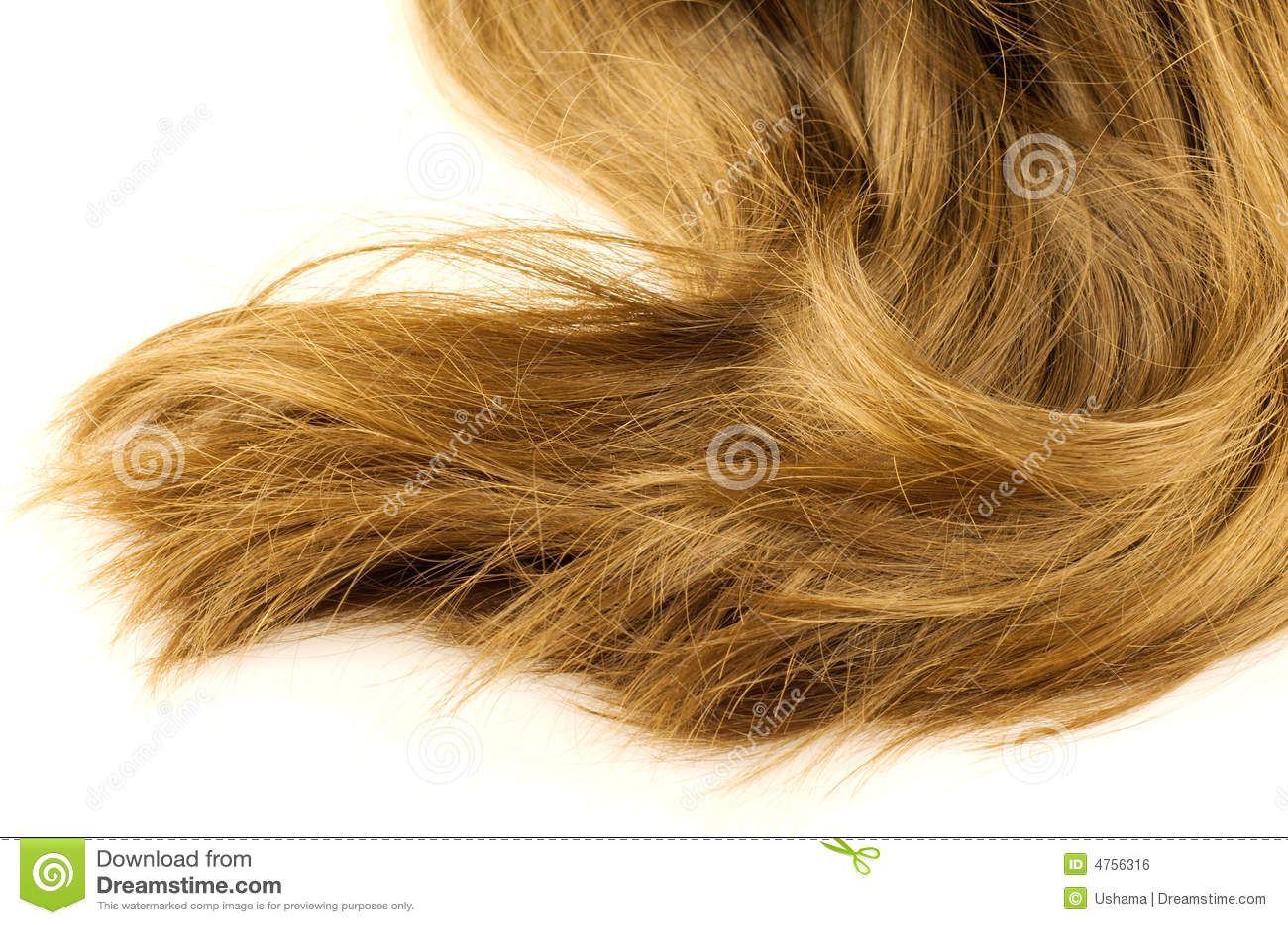 Beautiful Flaxen Hair Stock Photo Image Of Detail Golden 4756316