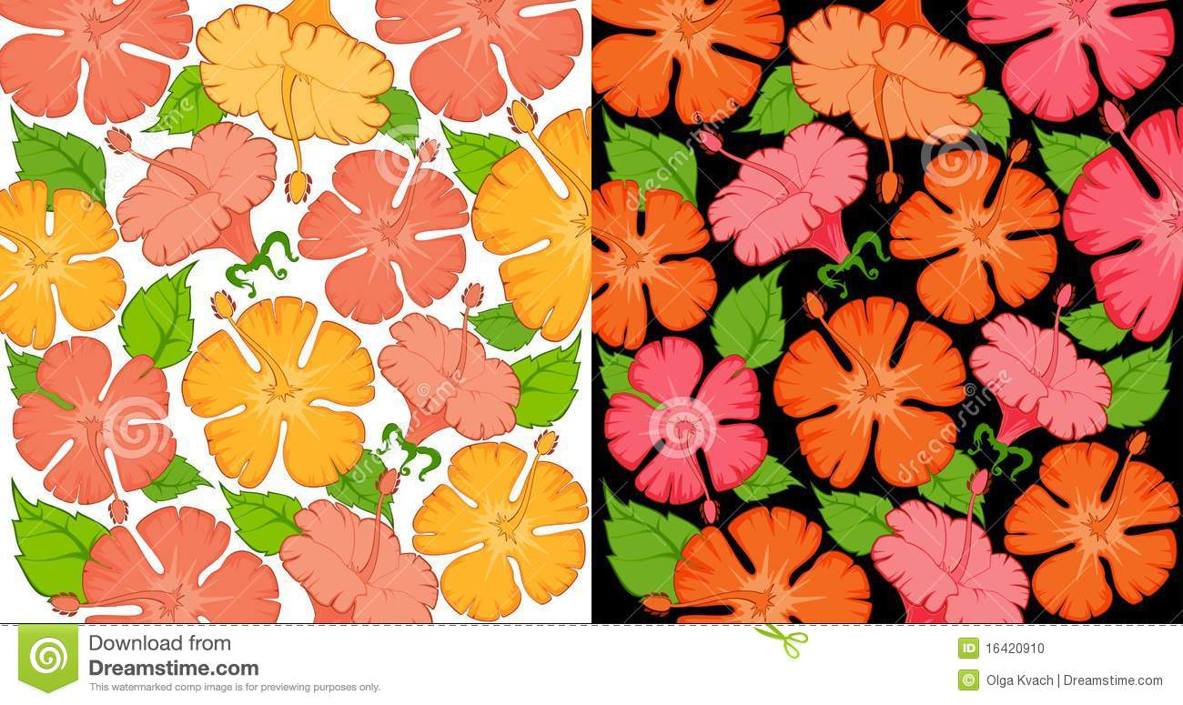 Hawaiian Floral Designs 2018 Images Pictures Tropical Leaves