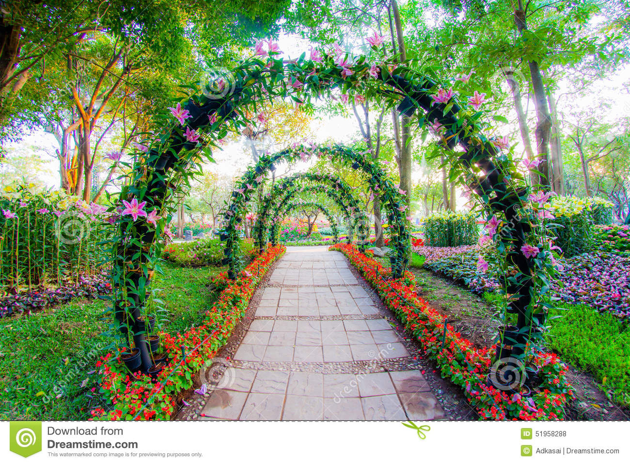Beautiful flower arches with walkway in ornamental plants for Beautiful flowers to plant in your garden