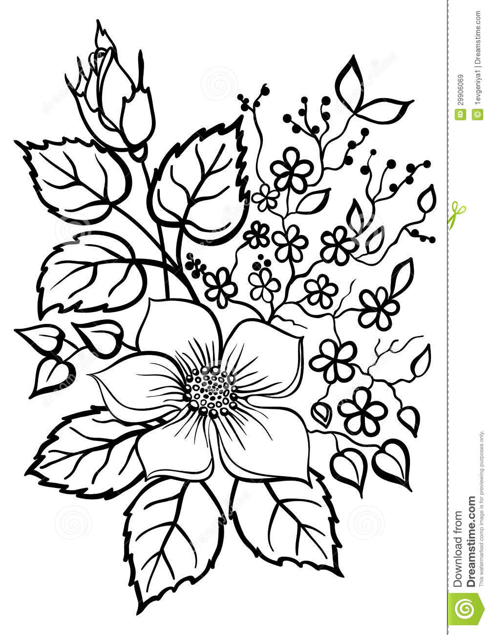 Beautiful Flower Arrangement A Black Outline On A White Stock