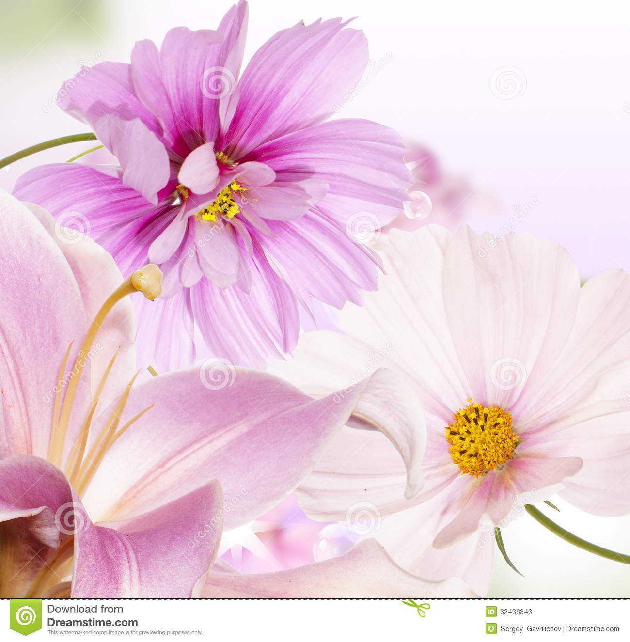 Beautiful Flower Background Stock Image Image Of Decorative