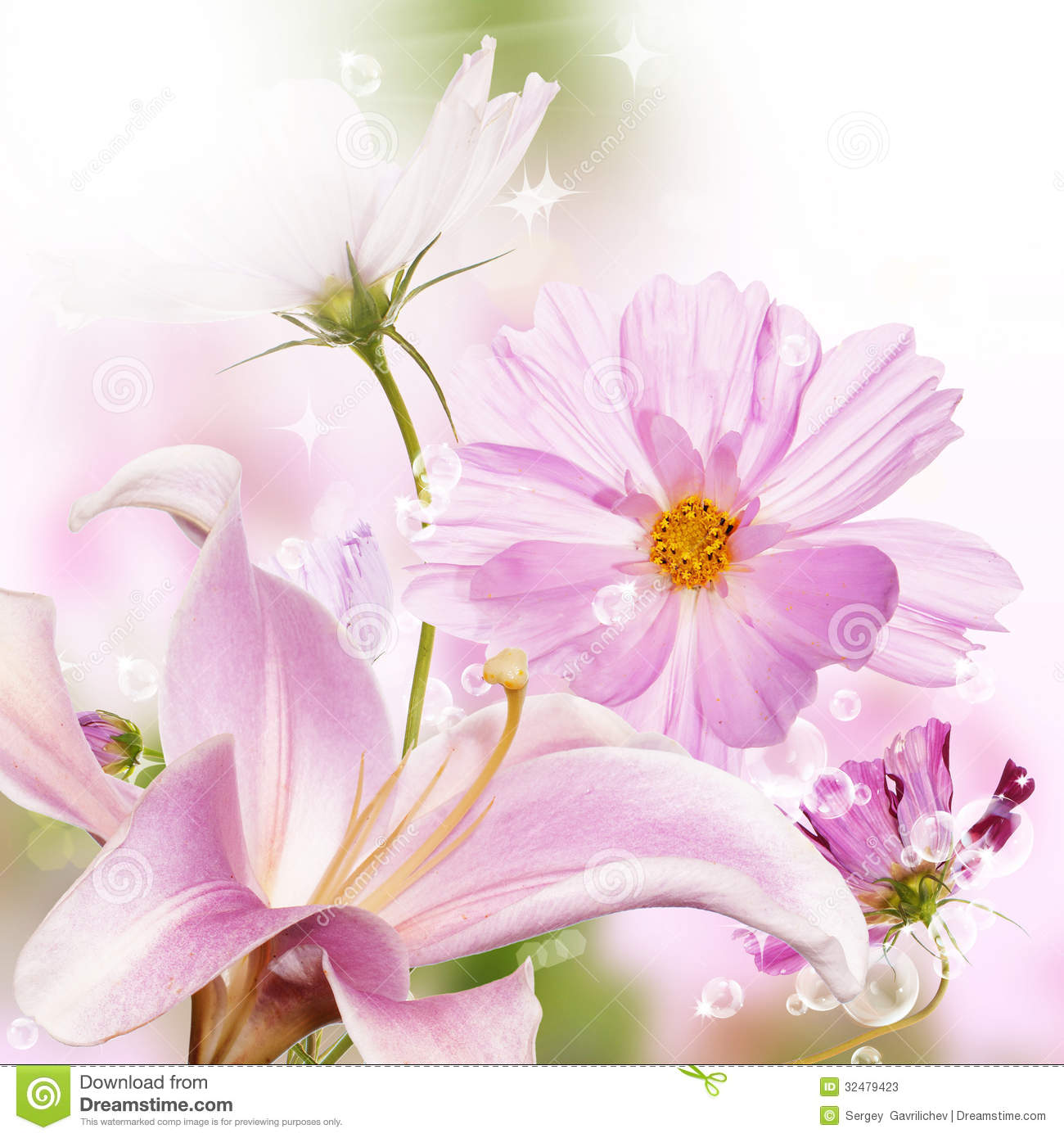 Beautiful Flower Background Stock Image Image Of Bloom
