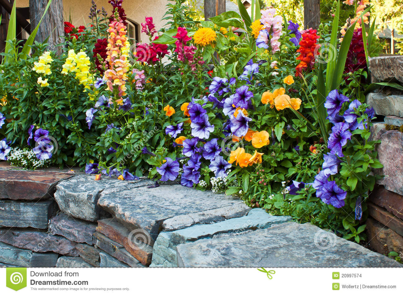 Beautiful flower bed stock images image 20997574 for Beautiful flower beds