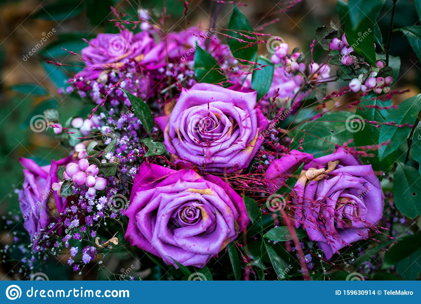 Beautiful Flower Bouquet Made Of Blue And Purple Roses Stock Photo Image Of Detailed Colourful 159630914