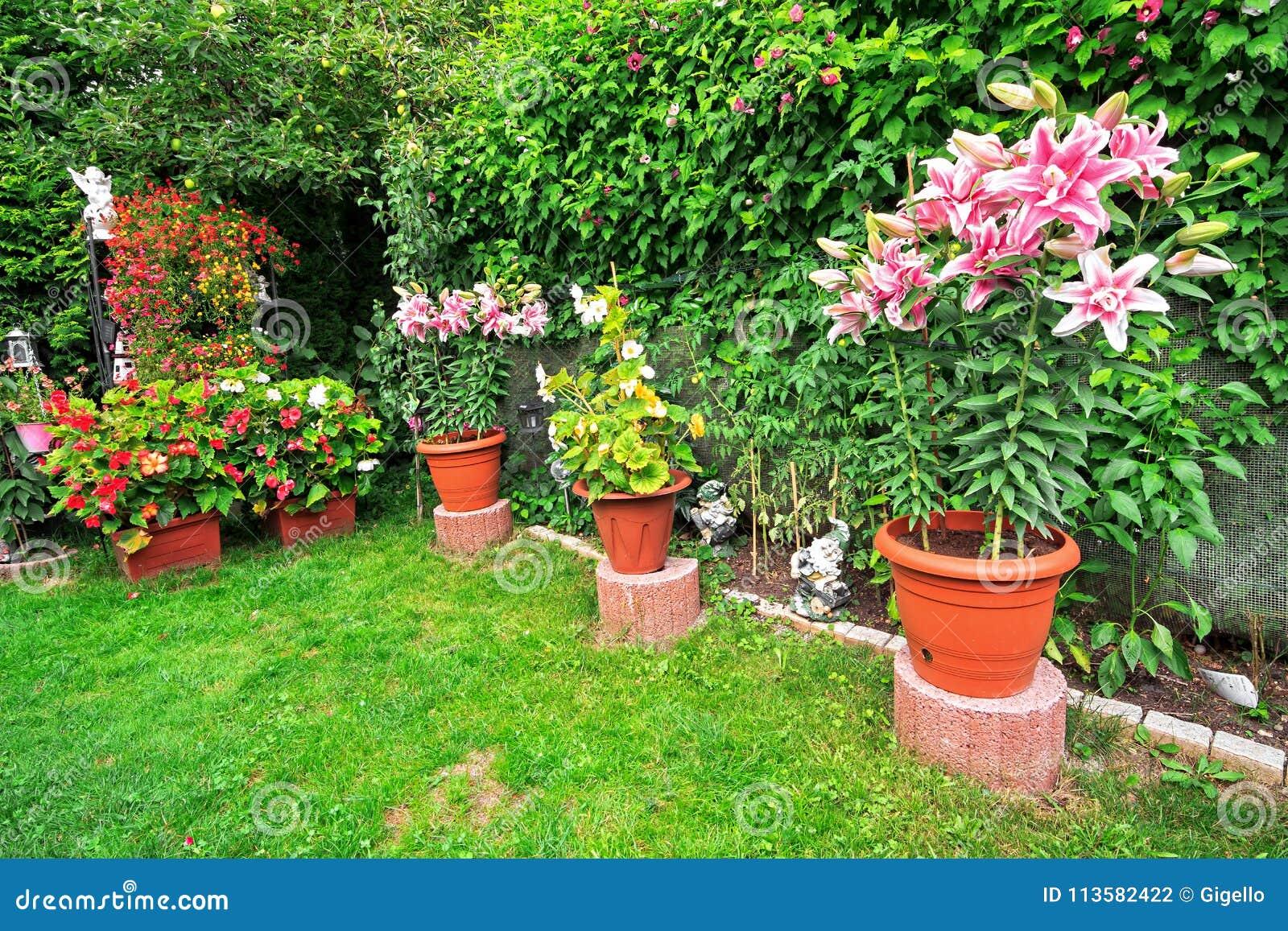 Beautiful Flower Garden And Flower Pot Decorations On Summer Stock