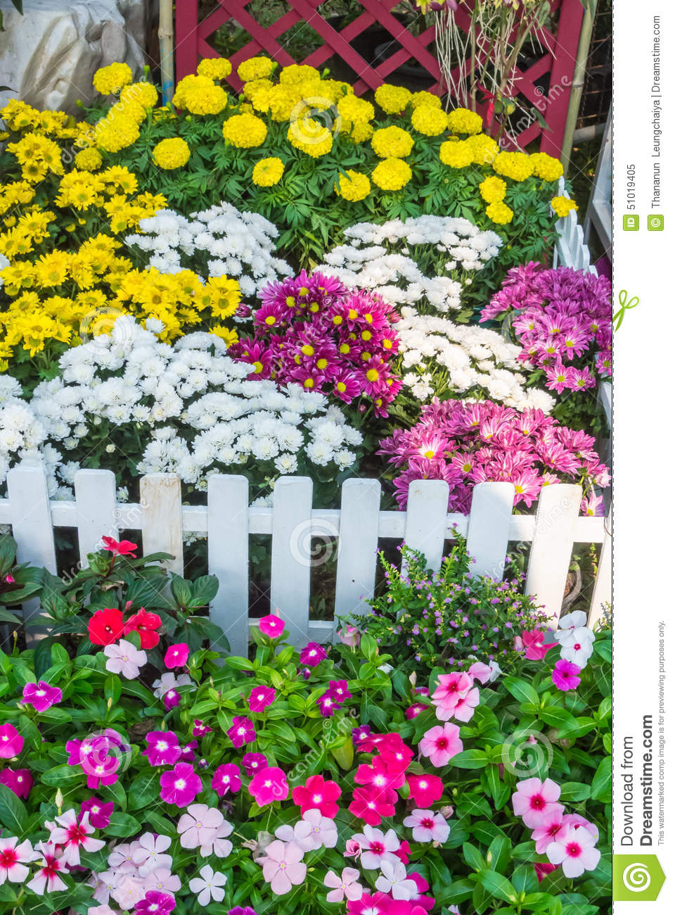 Beautiful flower garden. stock image. Image of beautiful ...