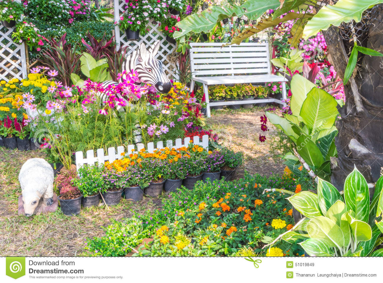 beautiful flower garden stock photo image 51019849