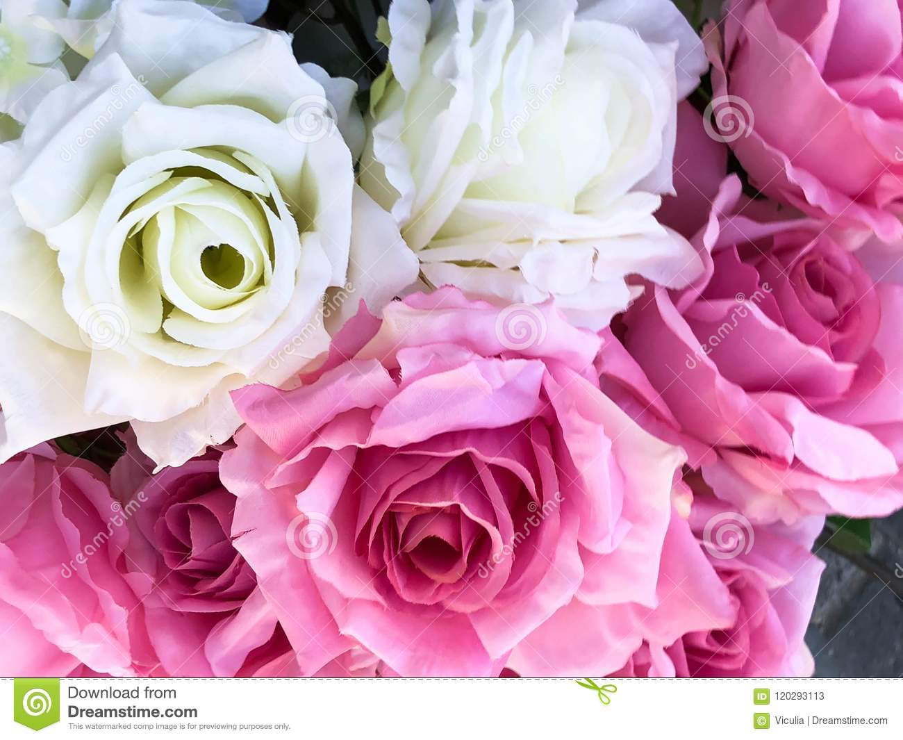 Beautiful Flowers Background For Design Or Decoration Cute Flowers