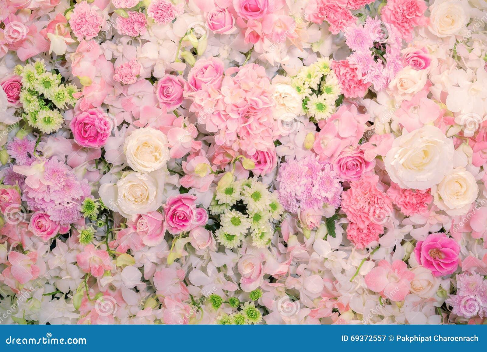 Beautiful flowers background for wedding scene stock image image download beautiful flowers background for wedding scene stock image image of green flora izmirmasajfo